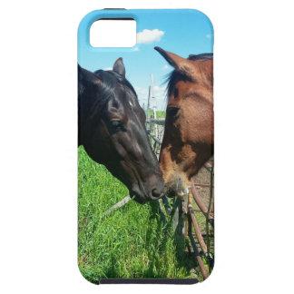 Capa Para iPhone 5 Cavalos
