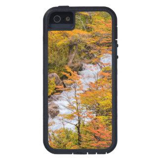 Capa Para iPhone 5 Cena colorida da paisagem da floresta, Patagonia