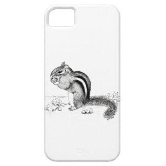 Capa Para iPhone 5 Chipmunk