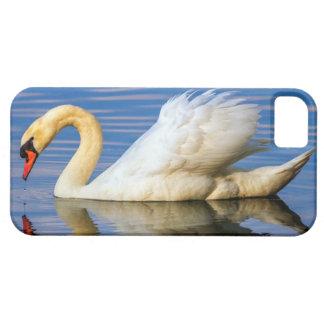 Capa Para iPhone 5 Cisne muda, olor do cygnus