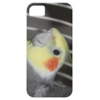 Capa Para iPhone 5 Cobrir do telefone do Cockatiel
