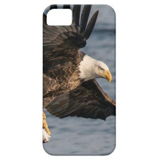Capa Para iPhone 5 Comida de travamento da águia americana