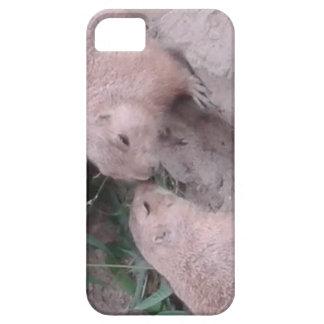 Capa Para iPhone 5 Esquilos à terra