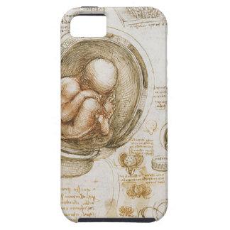 Capa Para iPhone 5 Estudos de Leonardo da Vinci do feto no ventre