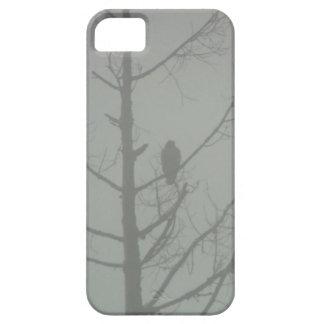 Capa Para iPhone 5 Falcão na névoa