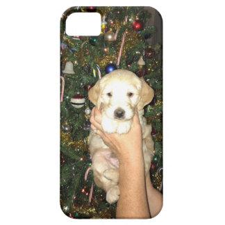 Capa Para iPhone 5 Filhote de cachorro de GoldenDoodle com árvore de