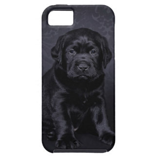Capa Para iPhone 5 Filhote de cachorro preto de Labrador