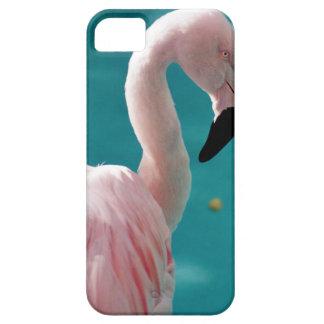 Capa Para iPhone 5 Flamingo cor-de-rosa