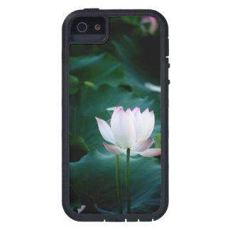 Capa Para iPhone 5 Flor de Lotus branco elegante