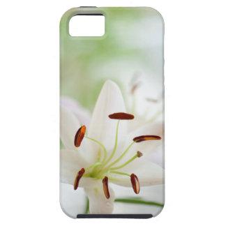 Capa Para iPhone 5 Flor do lírio branco inteiramente aberta