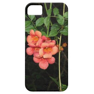 Capa Para iPhone 5 Flores da meia-noite