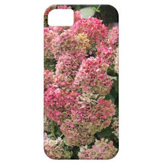 Capa Para iPhone 5 Flores de um hydrangea do francês (macrophyl do