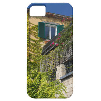 Capa Para iPhone 5 Folhas coloridas na casa
