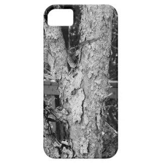 Capa Para iPhone 5 Foto preto e branco da natureza da árvore