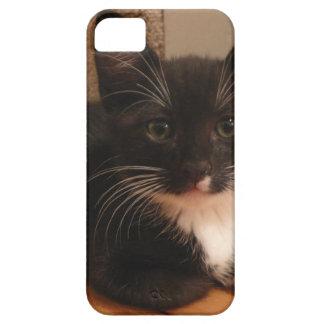 Capa Para iPhone 5 Gatinho preto e branco doce que olha O