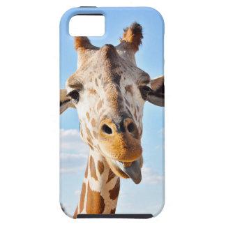 Capa Para iPhone 5 Girafa parvo