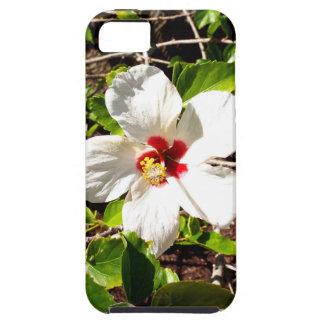 Capa Para iPhone 5 Hibiscus branco