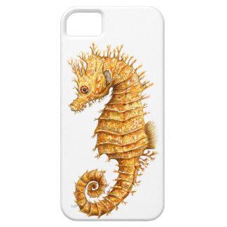 Capa Para iPhone 5 Hipocampo do hipocampo do cavalo de mar