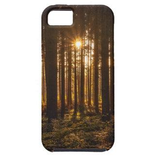 Capa Para iPhone 5 Ideia de árvores pretas e de Sun