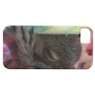 Capa Para iPhone 5 Jasmim