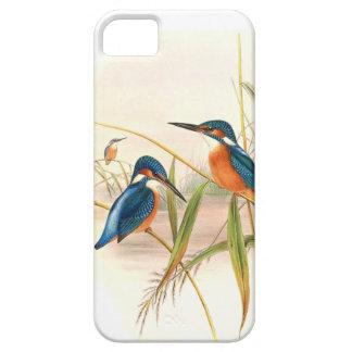 Capa Para iPhone 5 Lagoa dos animais dos animais selvagens dos