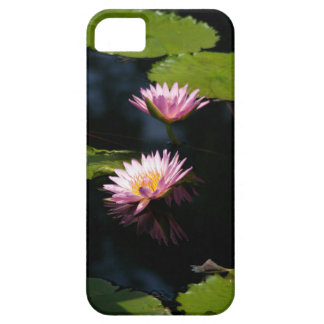 Capa Para iPhone 5 Lotus Waterlilies