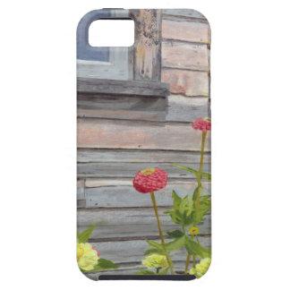 Capa Para iPhone 5 Madeira e Zinnias resistidos