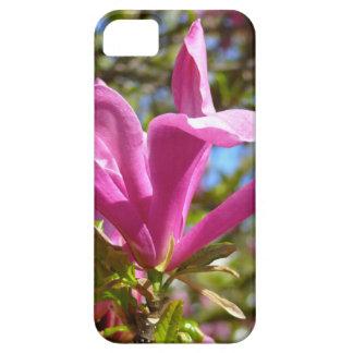 Capa Para iPhone 5 Magnólia roxa de florescência