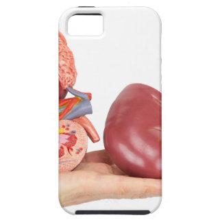 Capa Para iPhone 5 Mão lisa que mostra o rim humano modelo