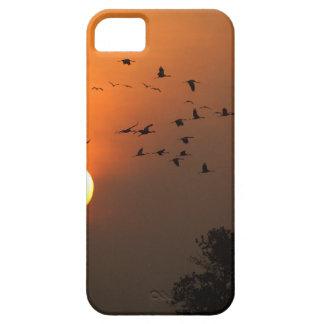 Capa Para iPhone 5 Nascer do sol com rebanhos de guindastes do vôo