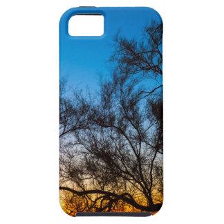 Capa Para iPhone 5 Nascer do sol da silhueta da árvore de Palo Verde
