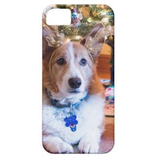 Capa Para iPhone 5 Natal do Corgi de Galês do Pembroke