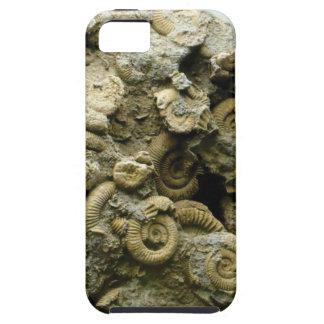 Capa Para iPhone 5 o fóssil descasca a arte