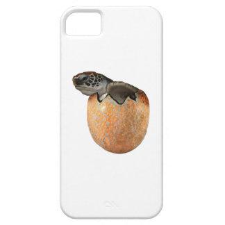 Capa Para iPhone 5 O Hatchling