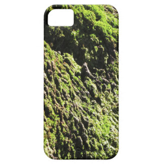 Capa Para iPhone 5 O musgo verde no detalhe da natureza de musgo
