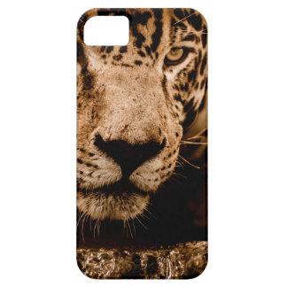 Capa Para iPhone 5 olhos de desengaço da água do jaguar