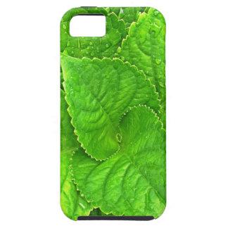 Capa Para iPhone 5 Para o amor da natureza
