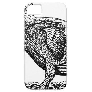 Capa Para iPhone 5 Pássaro do Dodo