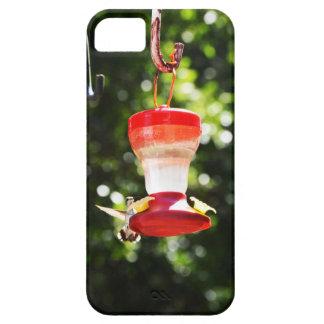 Capa Para iPhone 5 Pássaro do zumbido