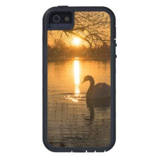 Capa Para iPhone 5 Por do sol com cisne