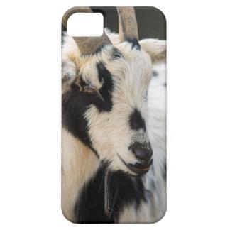Capa Para iPhone 5 Retrato da cabra