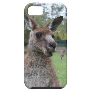 Capa Para iPhone 5 Selfie do canguru