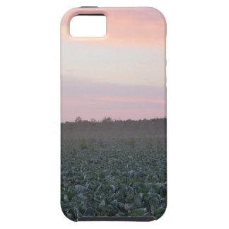 Capa Para iPhone 5 Serene_country_background.JPG