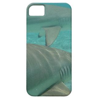 Capa Para iPhone 5 shark
