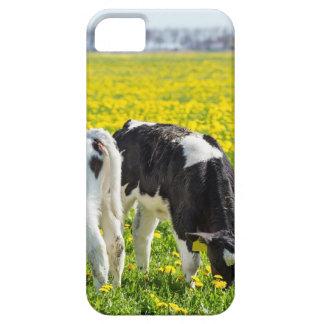 Capa Para iPhone 5 Três calfs recém-nascidos no prado dos