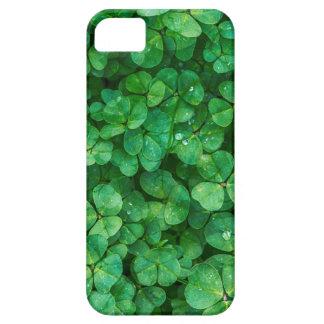 Capa Para iPhone 5 Trevos afortunados de St Patrick
