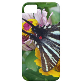 Capa Para iPhone 5 Zebra Swallowtail+Besouro japonês