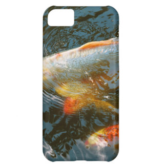 Capa Para iPhone 5C Animal - peixe - dê a boa fortuna