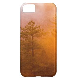 Capa Para iPhone 5C Floresta dourada da corriola
