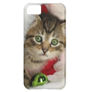 Capa Para iPhone 5C Gato do Natal - gato do gatinho - gatos bonitos